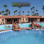 gay Los Almendros Maspalomas